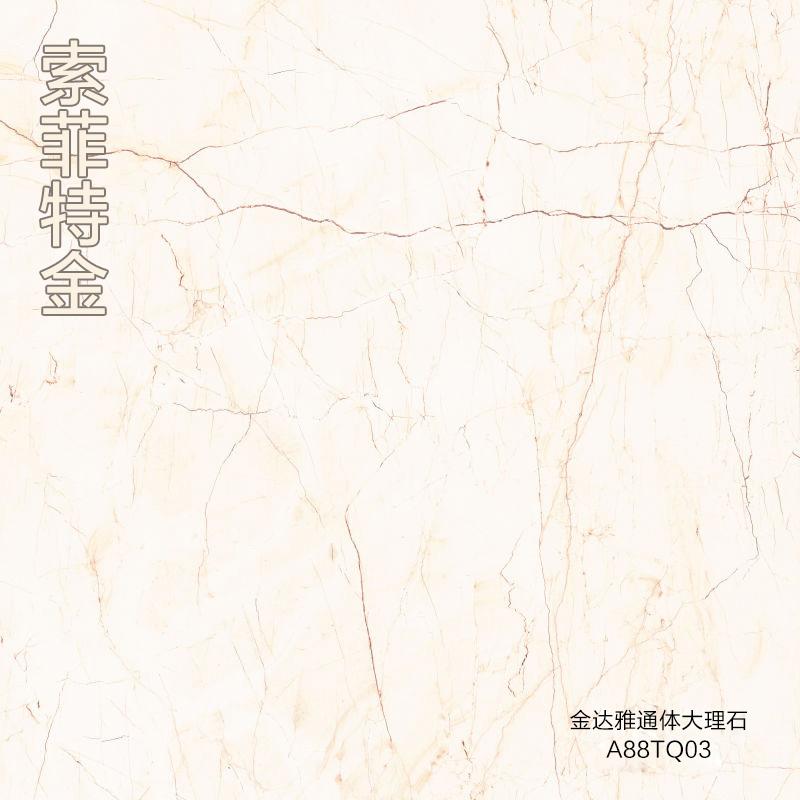 金达雅陶瓷通体大理石系列(800*800MM)
